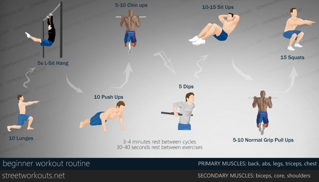 beginner-workout-routine