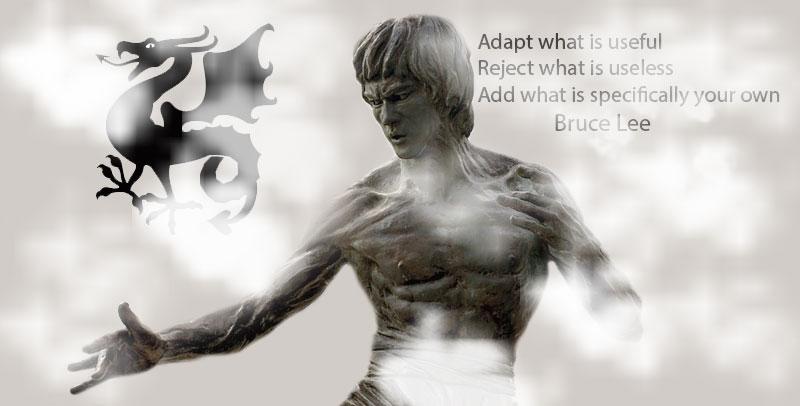 Bruce Lee code